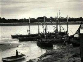 fisher fleet 1